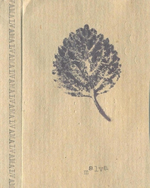 Malva cover